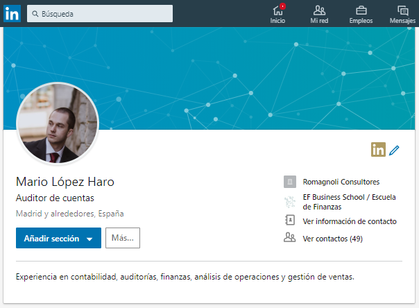Perfil Malo Auditor Financiero