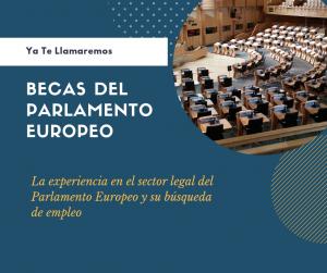 becas parlamento europeo experiencia