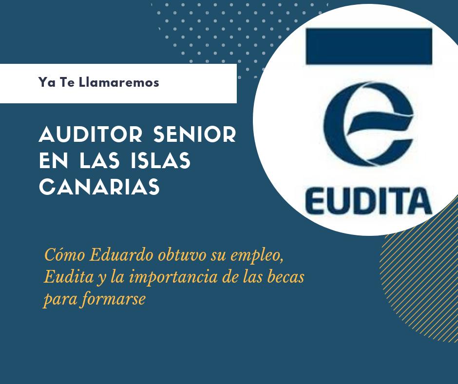Trabajo de Auditor Canarias