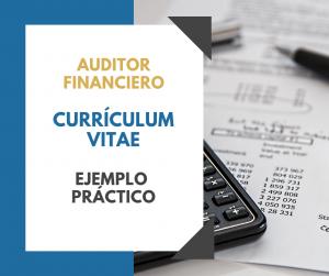 Ejemplo CV Auditor