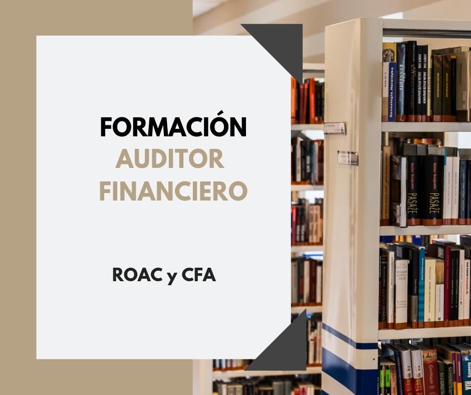 Auditor CFA ROAC