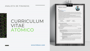 Curriculum Vitae Analista de Finanzas