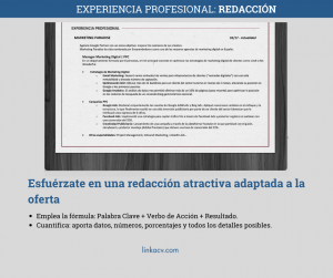 CV Especialista en Marketing Digital LinkaCV Experiencia Profesional