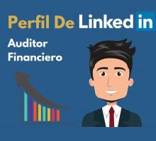 Perfil de LinkedIn auditor